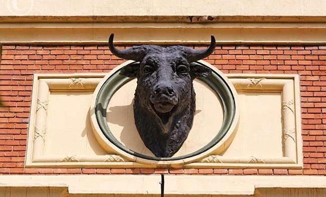 ...y una de las estupendas cabezas de toro que hay en ella